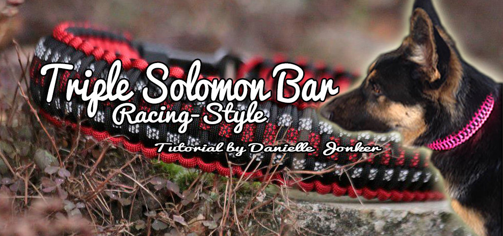 Neues Tutorial Online: Triple Solomon Bar – Racing Style
