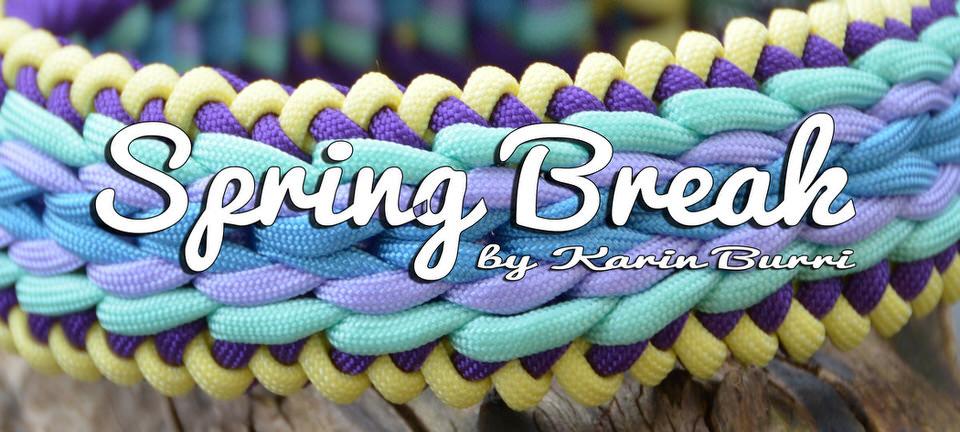 Neues Tutorial Online: Spring Break