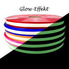 Biothane Glow in the Dark 25mm | 2.5mm red